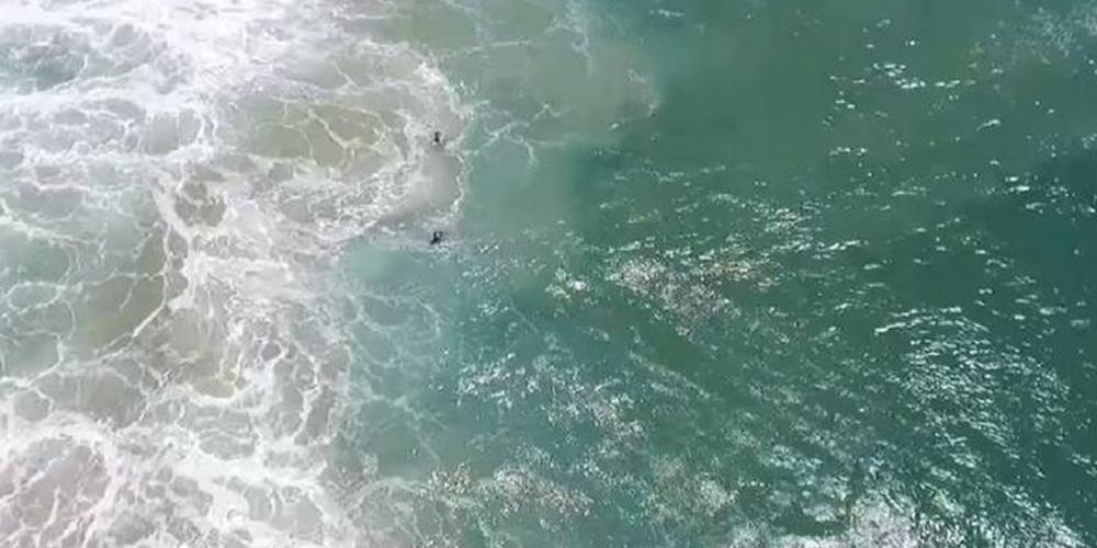 YouTube: captan primer rescate acuático por un dron en Australia [VIDEO]